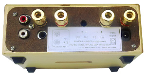 NSMT Modified Lepai Amp